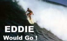 imagem destacada 4 - eddie would go
