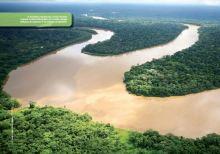 amazonia viva 2